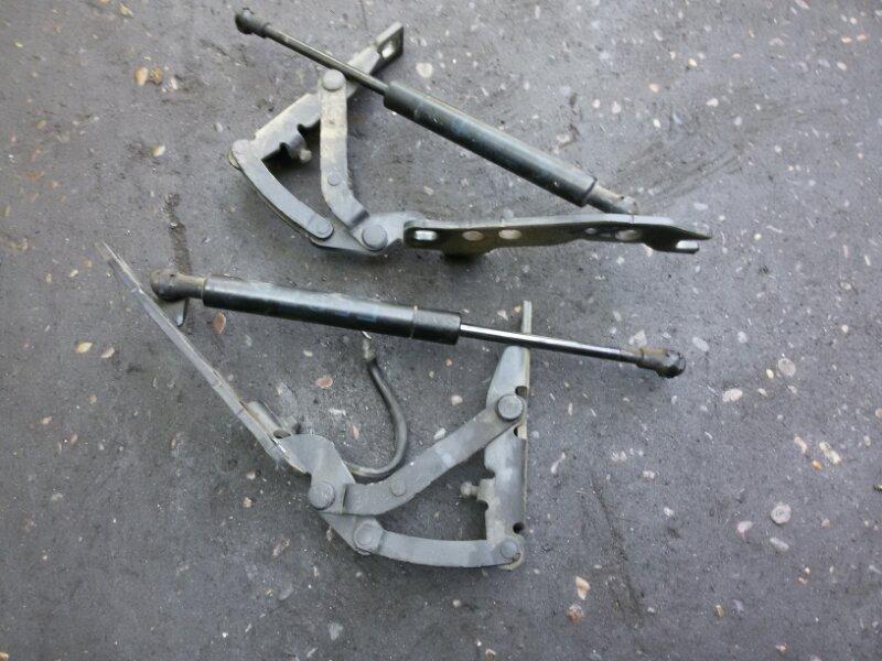 Петля капота Bmw X5-Series E53 M54B30 2005