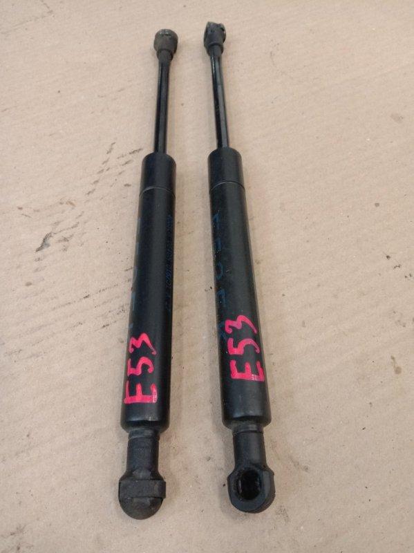 Амортизатор капота Bmw X5-Series E53 M62B44 2001