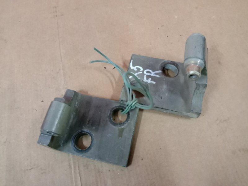 Петля двери Bmw X5-Series E53 M54B30 2005 передняя правая