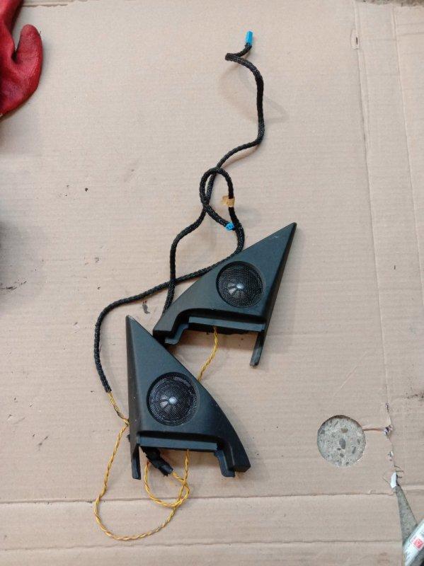 Динамик Bmw 6-Series E63 N52B30 2006 передний