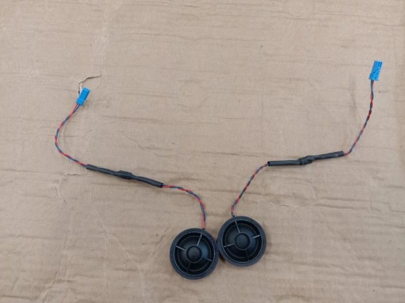 Динамик Bmw X5 E70 N62B48 2008