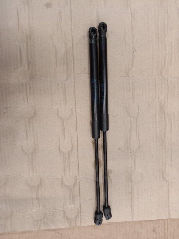 Амортизатор капота Bmw X5 E70 N62B48 2008