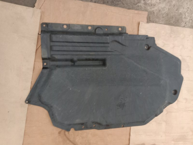 Пластиковая защита Bmw X5 E70 N62B48 2008 левая