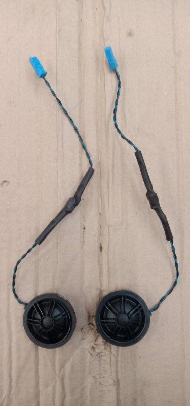 Динамик Bmw X5 E70 N55B30 2010 передний