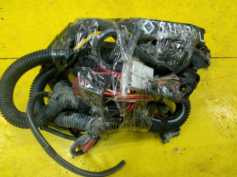 Проводка двигателя Renault Symbol