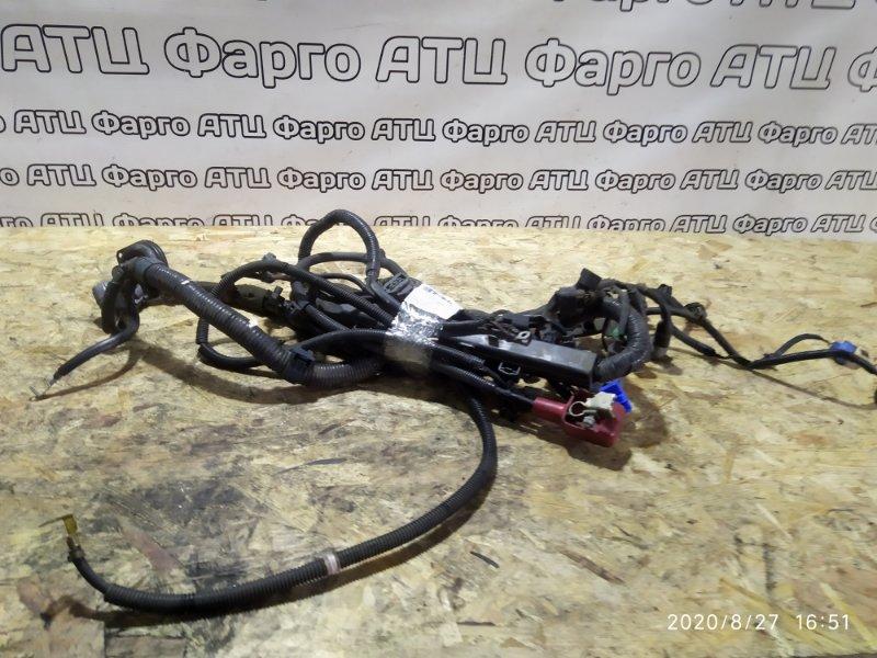 Проводка двигателя Honda Accord CF3 F18B