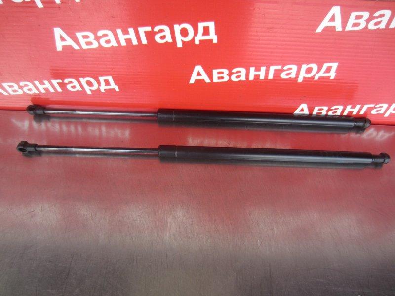 Амортизатор крышки багажника Bmw E53 2001 задний