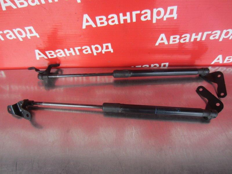Амортизатор крышки багажника Bmw E87 N43B16 2008