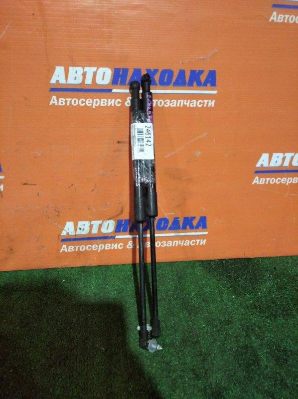 Амортизатор капота Bmw 3 E90 N45B20B 2004 передний пара