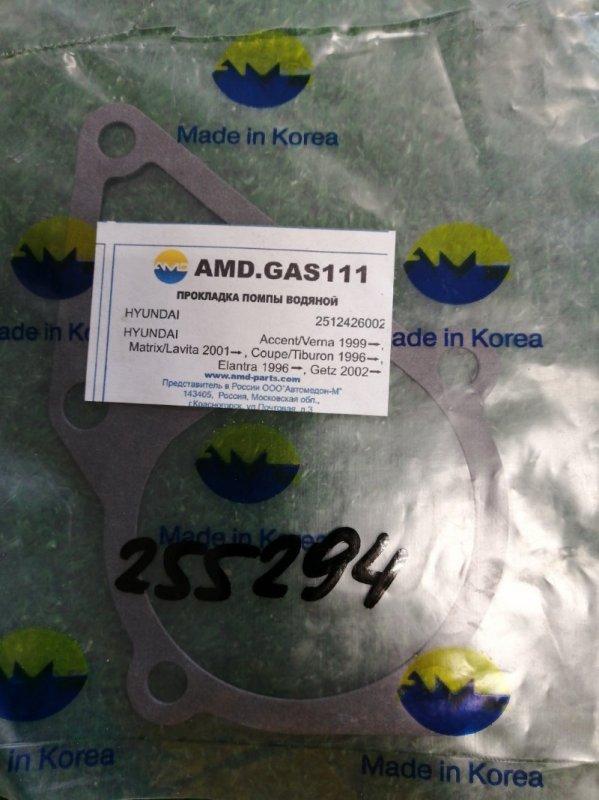 прокладка помпы водяной AMD