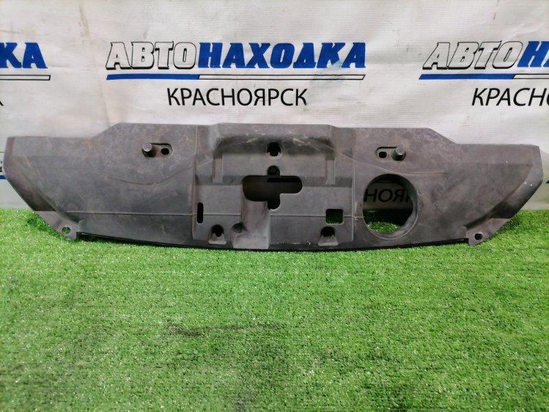 Накладка на телевизор Honda Cr-V RE3 K24A 2006 На рамку радиатора.