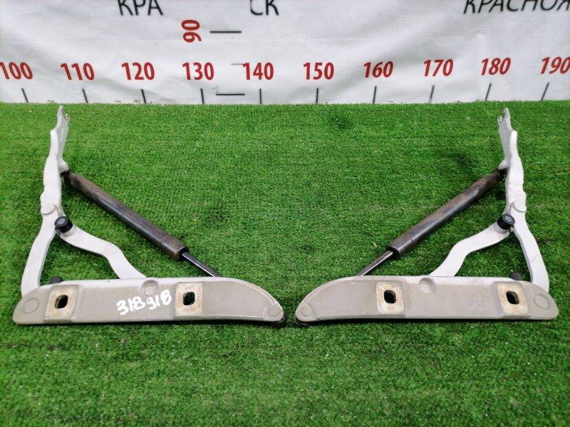 Кронштейн багажника Bmw 320I E46 M54 B22 2001 задний Пара L+R в комплекте с амортизаторами.