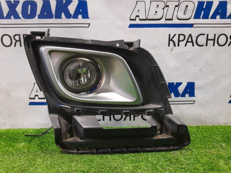 Фара противотуманная Mazda Mpv LY3P L3-VE 2006 передняя правая 114-61009 правая передняя,
