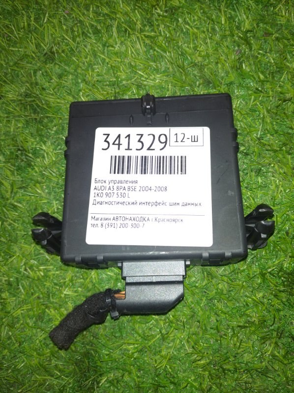 Блок управления Audi A3 8PA BSE 2004 Диагностический интерфейс шин данных