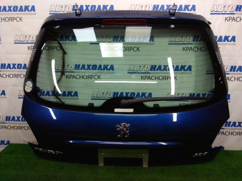 Дверь задняя Peugeot 206 2A/C TU3JP 2003 задняя ХТС. В сборе, хэтчбек, синяя (EGE).
