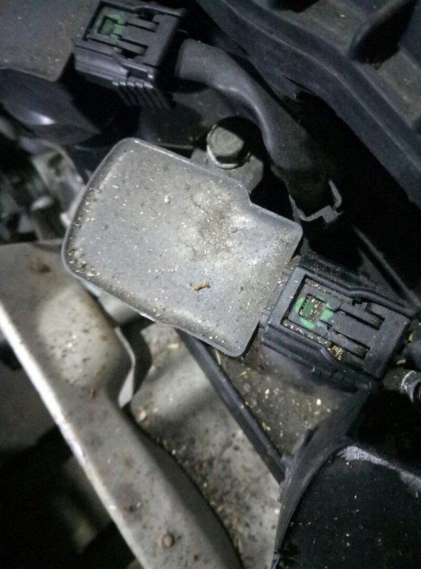 Катушка зажигания Honda Fit Shuttle GP2 LDA 2011 CM11-118