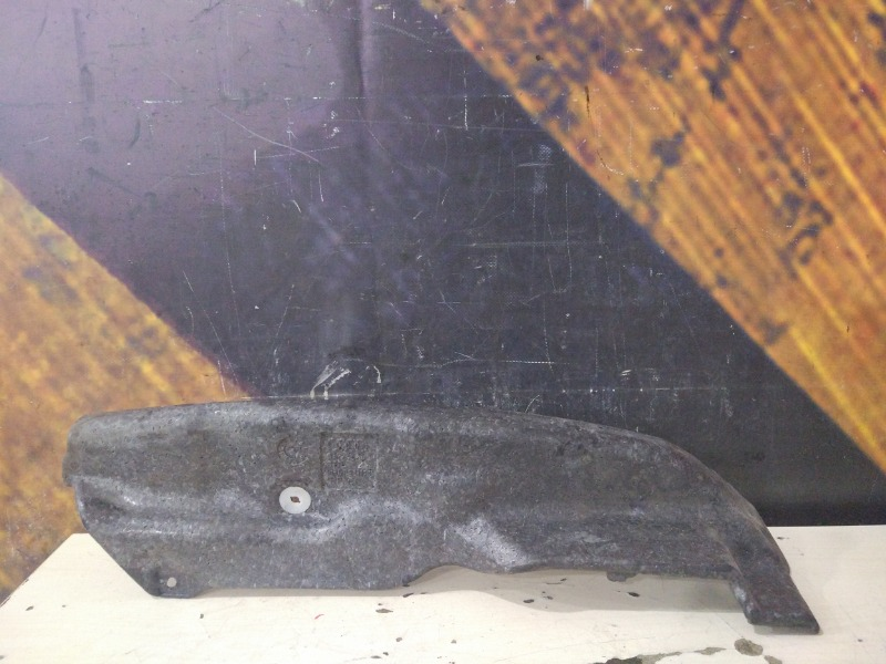 Пыльник крыла Audi A6 C5 ASN 2003 передний правый