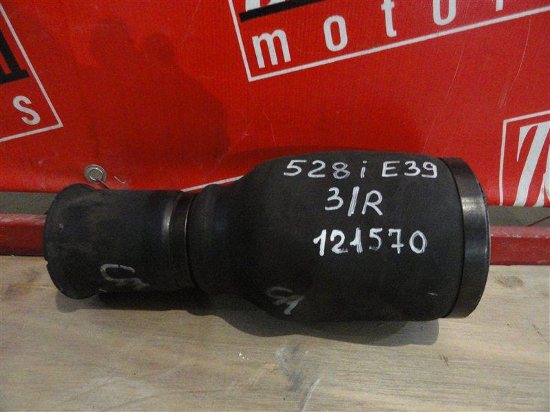 Ресивер пневматической подвески Bmw 528 E39 M52 B28 1999 задний левый