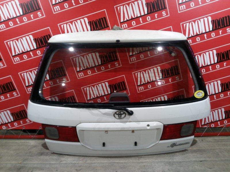 Дверь задняя багажника Toyota Ipsum SXM10 3S-FE 1996 задняя белый