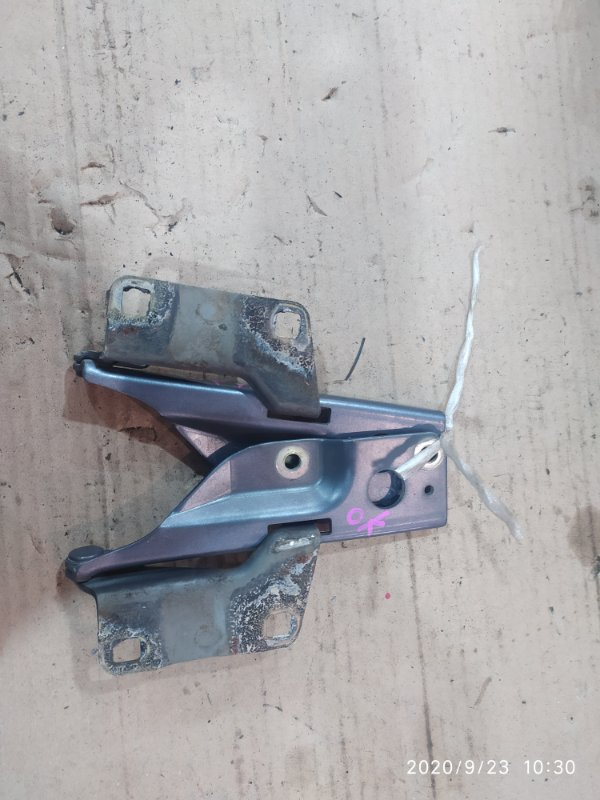 Петля капота Nissan Wingroad WFY11 QG15DE 2001