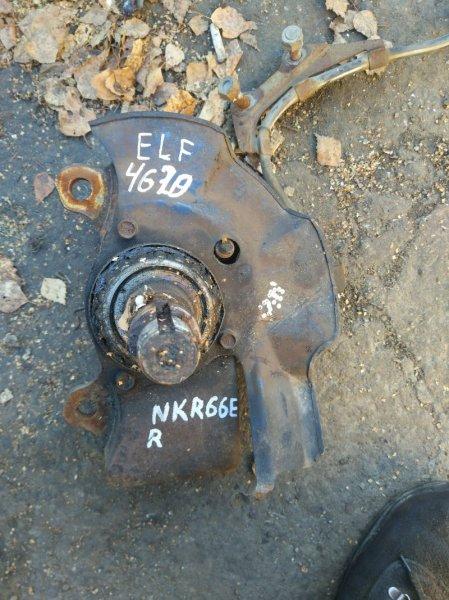 Поворотный кулак Isuzu Elf NKR66L 4HF1 1998 передний правый