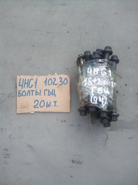 Болт гбц Isuzu Elf NKR71G 4HG1 1997