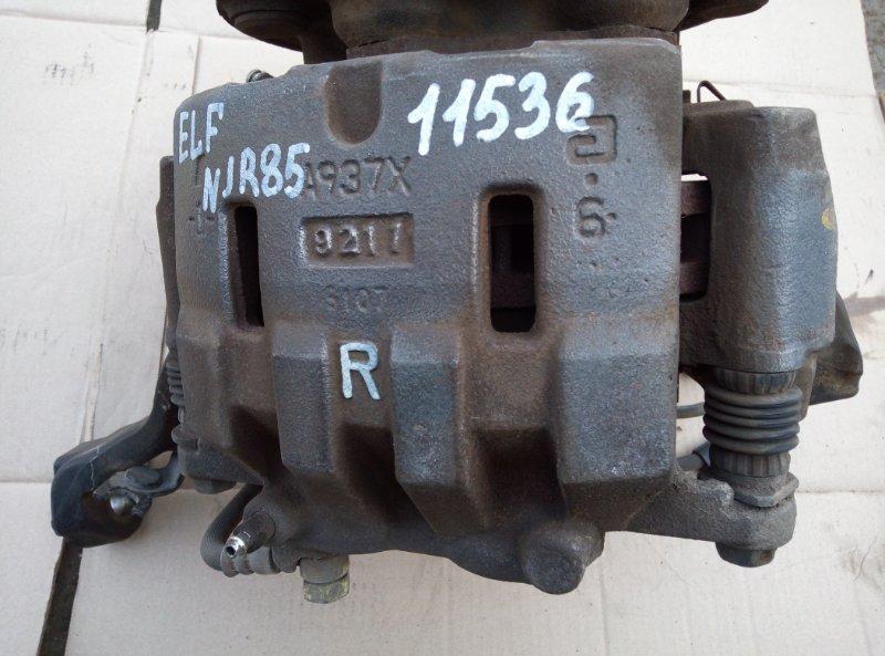 Тормозной суппорт Isuzu Elf NJR85 4JJ1 2009 правый