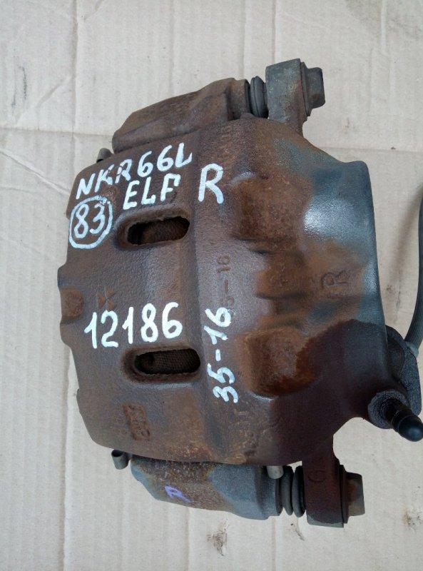 Тормозной суппорт Isuzu Elf NKR66L 4HF1 1998 правый