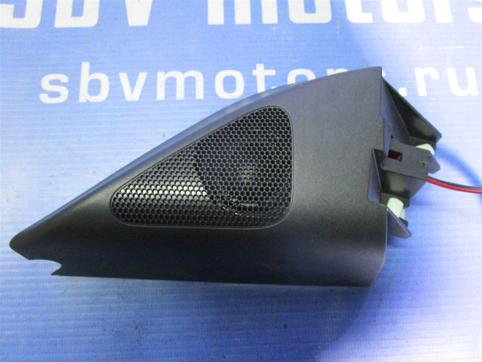 Динамик Volkswagen Passat B6 BVY 2006 передний правый