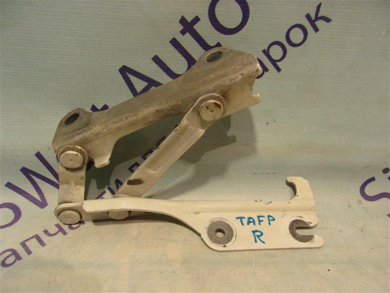 Петля капота Mazda Millenia TAFP KF-ZE 2000 передняя правая