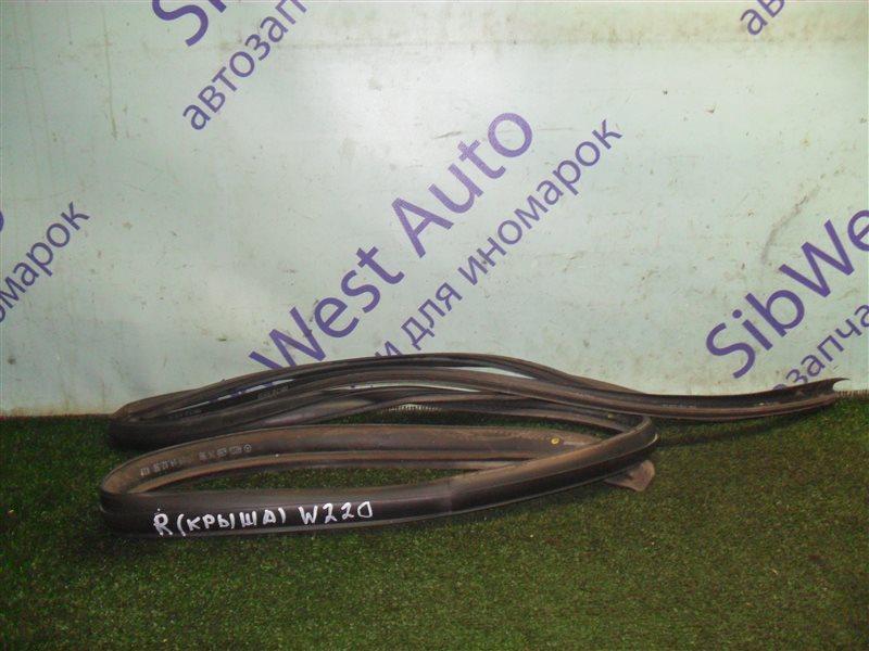 Уплотнение дверное Mercedes-Benz S-Class W220 M113E50 1999 правое