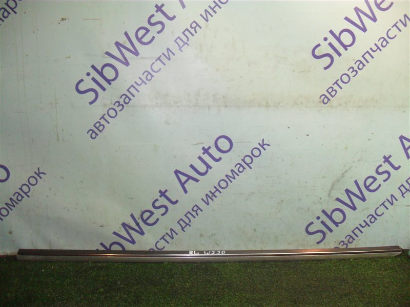 Молдинг на дверь Mercedes-Benz S-Class W220 M113E50 1999 задний левый верхний