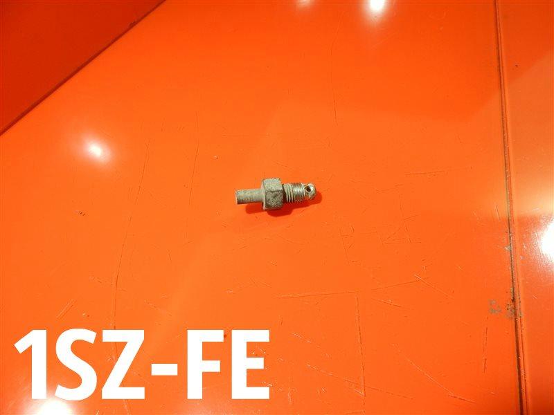 Сливная пробка блока Toyota Echo SCP11 1SZ-FE