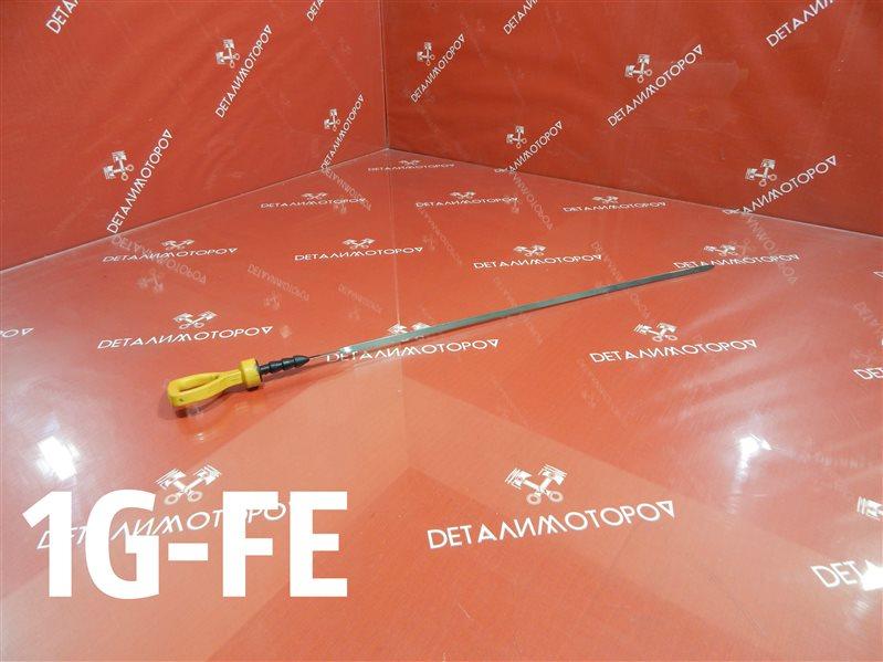 Щуп масляный Toyota Altezza E-GX90 1G-FE