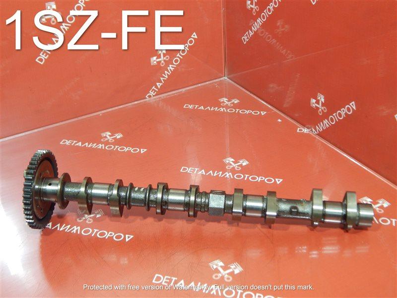 Распредвал Toyota Echo SCP11 1SZ-FE