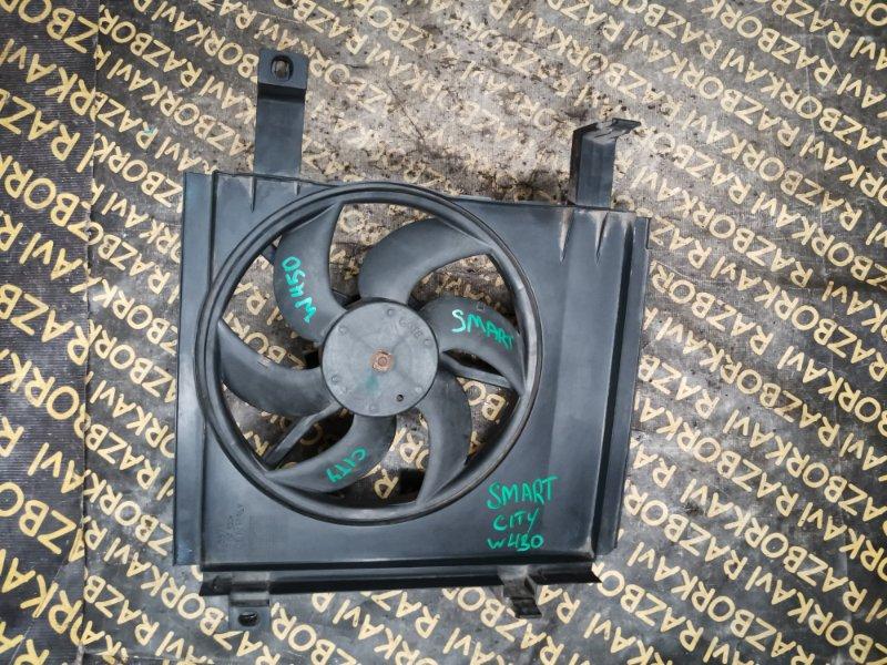 Вентилятор радиатора Smart City W450