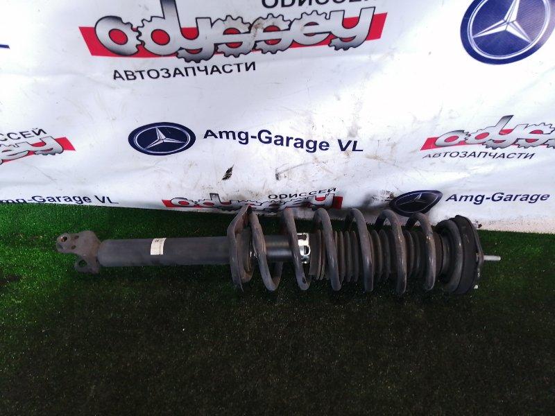 Стойка подвески Nissan Fuga HY51 VQ35HR 2011 задняя правая