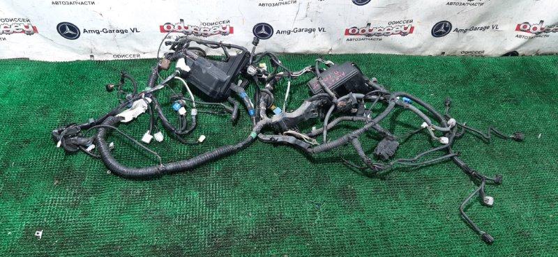 Коса под капот Toyota Alphard ANH25-8013509 2AZ-FE 2009
