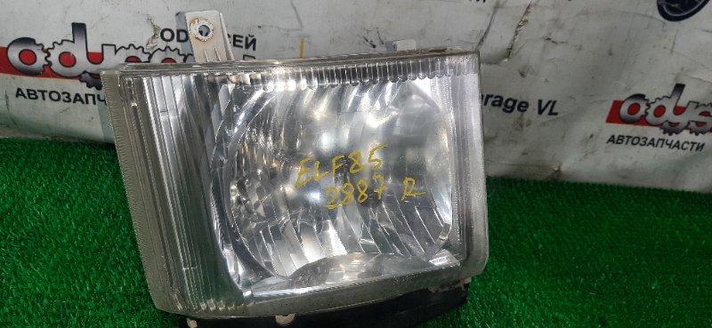 Фара Isuzu Elf NMS85 4JJ1-676706 2008 правая