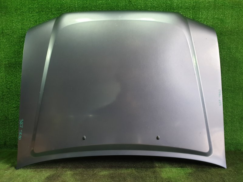 Капот Nissan Terrano TR50 ZD30DDTI 2001 (б/у)