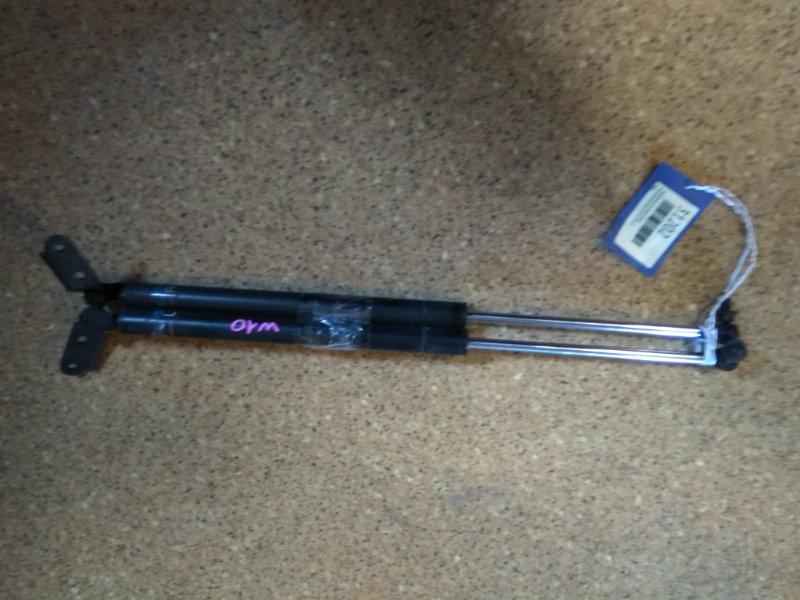 Амортизатор двери Nissan Avenir SW10 CD20T задний