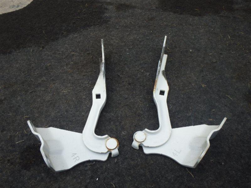 Петли капота Mazda Mpv LY3P L3-VDT 2007