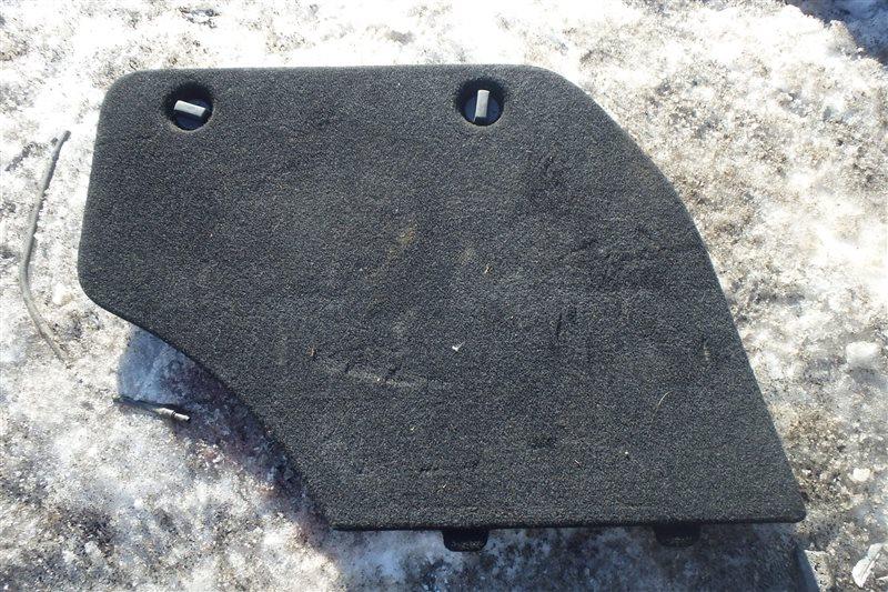 Обшивка багажника Toyota Caldina AZT246 1AZ-FSE задняя правая