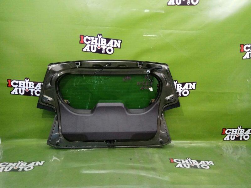 Дверь 5-я IQ 2009 KGJ10