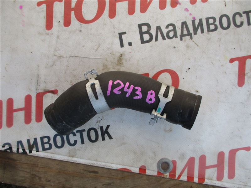 Патрубок радиатора Toyota Mark X GRX130 4GR-FSE 2010 1243