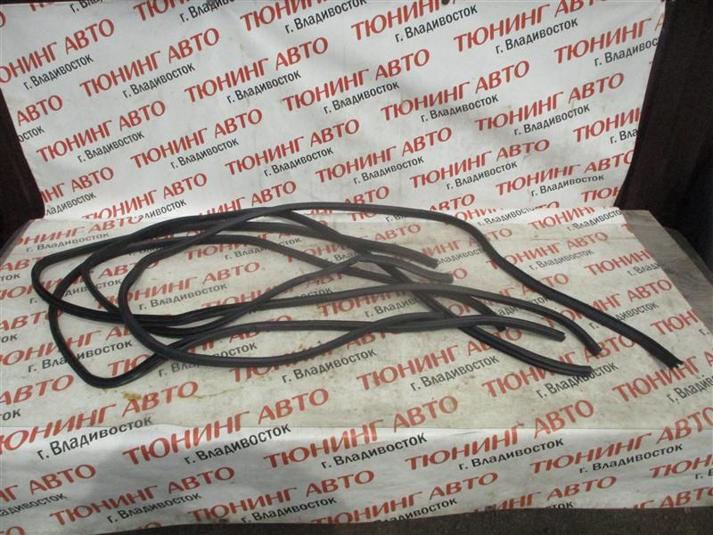 Уплотнительная резинка дверей Nissan X-Trail TNT31 QR25DE 2008 1335