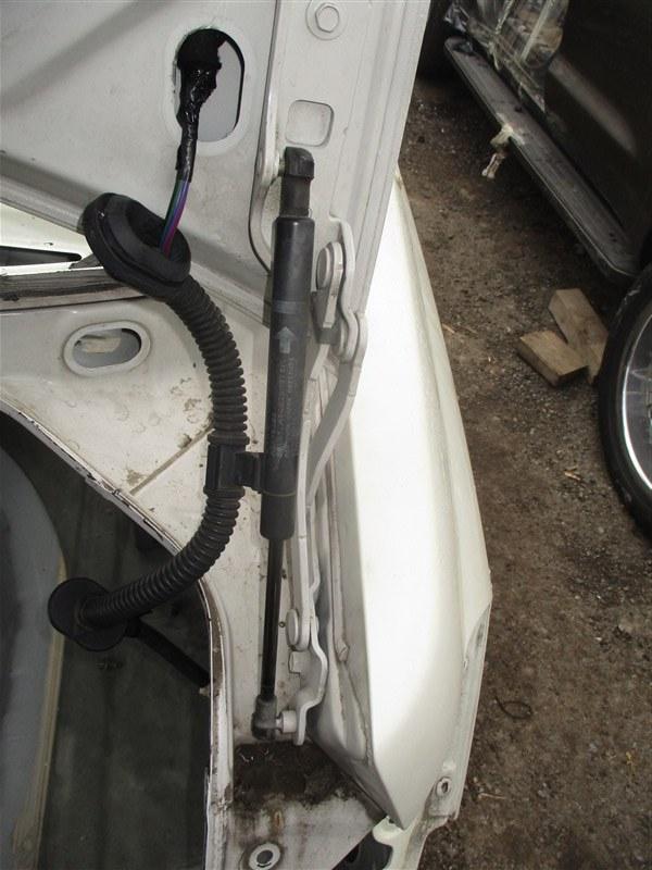 Петля крышки багажника Nissan Teana J31 VQ23DE 2006 белый qx1 1360