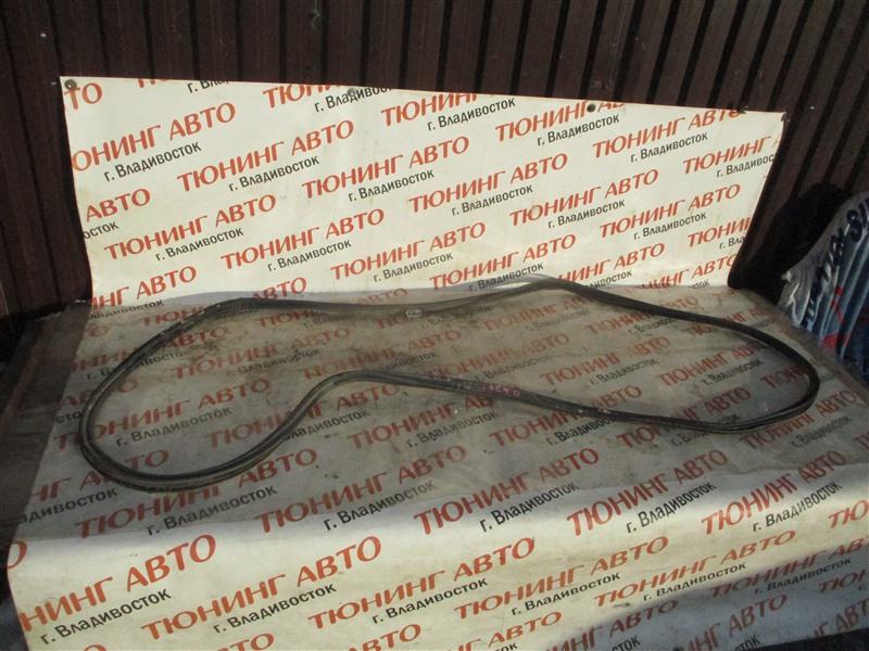 Уплотнительная резинка багажника Toyota Sequoia USK65 3UR-FE 2009 1364