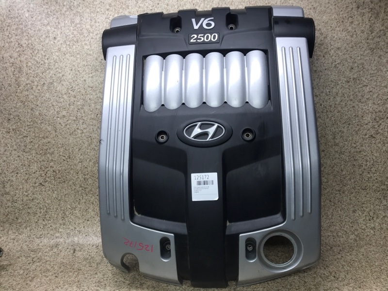 Пластиковая крышка на двс Hyundai Xg250 XG