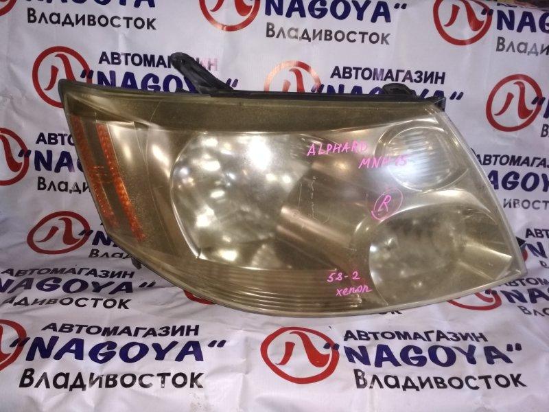 Фара Toyota Alphard MNH15 передняя правая 58-2